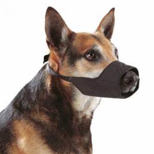 Bozal Buster  en Nylon para Perro.